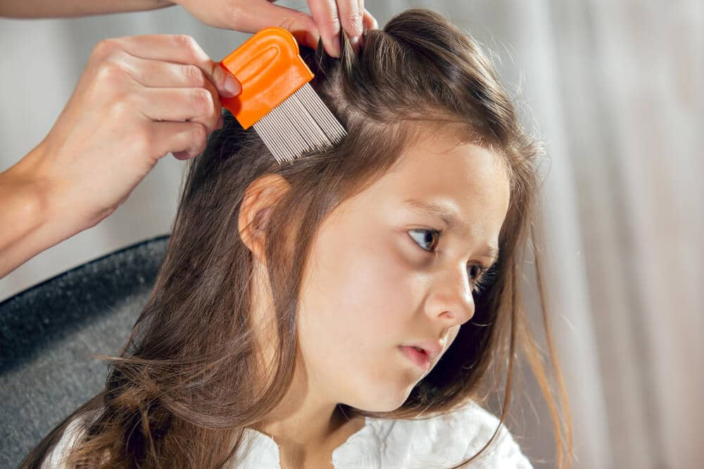combing out lice