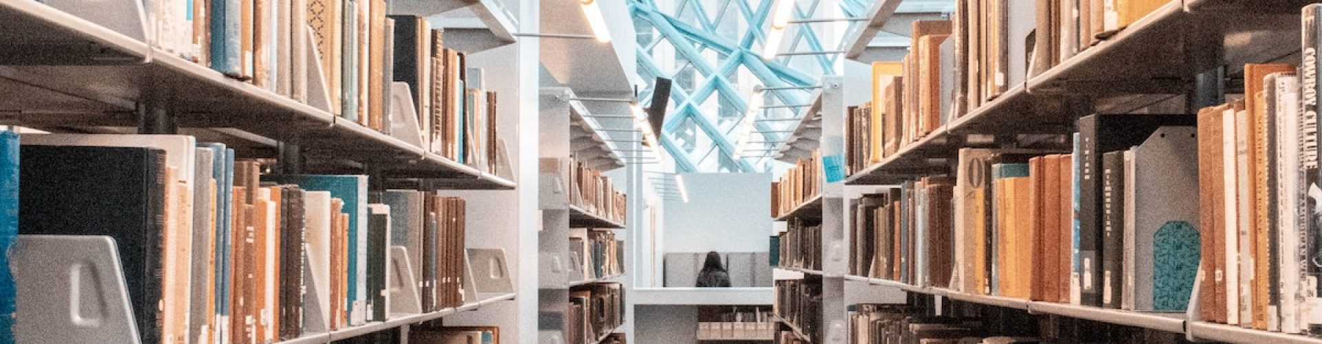 head lice library