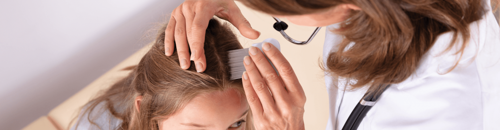 how to use lice comb